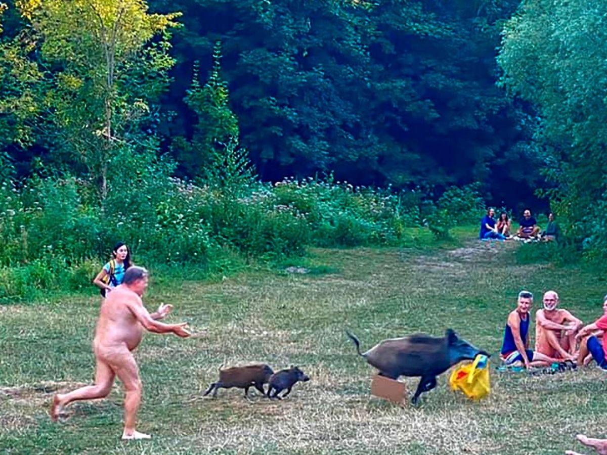 woman having sex with a donkey xxx